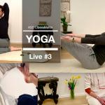 Sedute di yoga da Portogruaro in diretta Facebook
